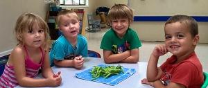 Green beans-2